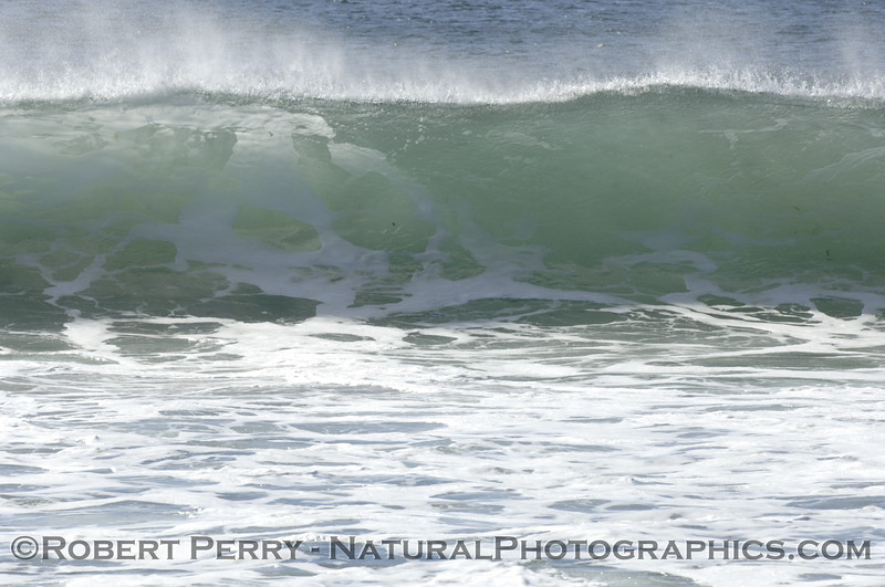 Whitewater smoking wave.