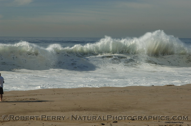 Shorebreak: Westward Beach, Zuma.  Big Wednesday. December 2005.