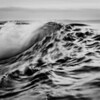 Sea Motion