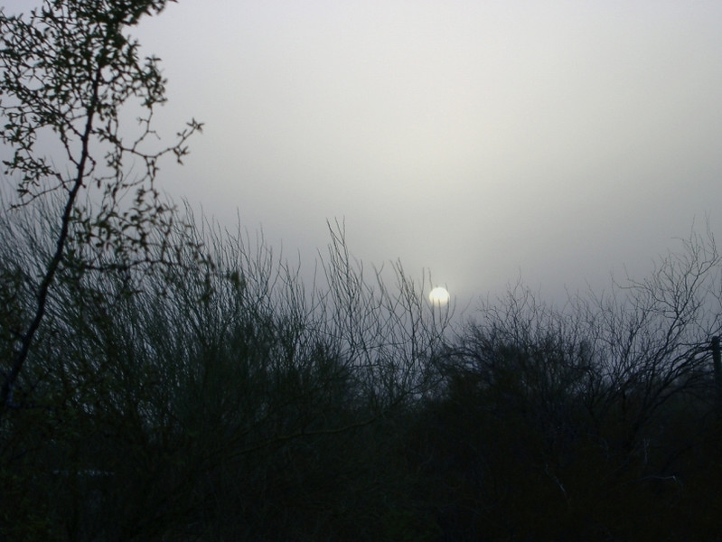 April winds brought severe duststorms to our part of southern Arizona. This is the sun just before sunset.