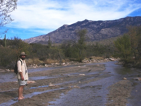 The trail crosses Sutherland Wash several times.