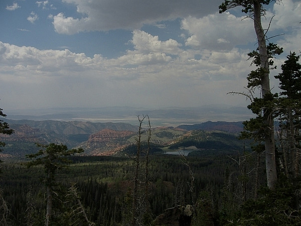 Looking northwest from Spruce Trail over Yankee Meadow Resevoir. July.