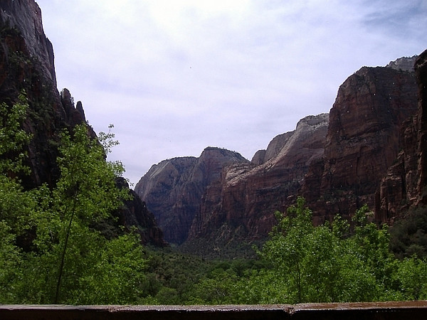 Weeping Rock, Zion National Park, May.
