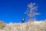 Rhonda pushed me off the mountain.