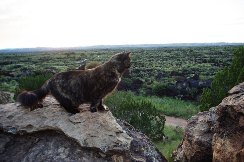 As the sun set, Libby and I checked out the sandstone rocks that lie at the edge of the lava field (the namesake of the rec area.)<br /> To the west, just beyond the mountains behind Libby's majestic profile lies the White Sands missile range.