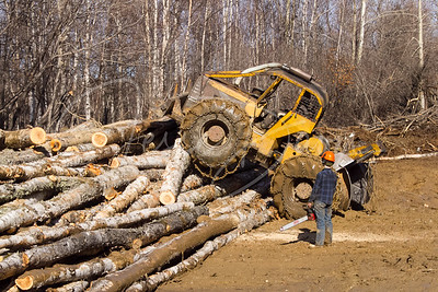 Wayne Hunter the Woodcutter, LLC, on the timber lot