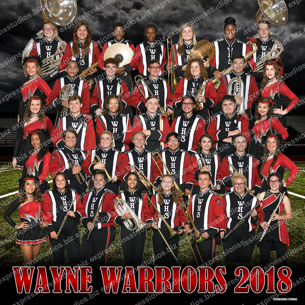 WHS Band Group Banner 2018 copy