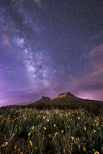 Corralitos Under The Milky Way