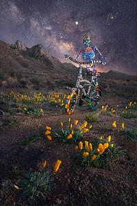 Night Rider Dos