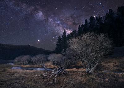 Memories and Starlight