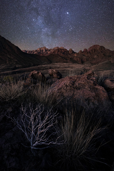 Organ Mountains Solitude