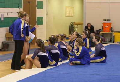 2010 Edina Meet Wayzata Gymnastics