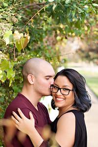 Professional Engagement, Couples Portraits