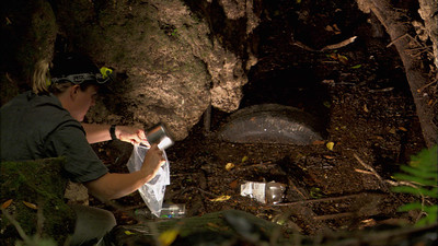 Jill Heinerth gathers a water sample at a polluted sinkhole in Florida. Photo: Wes Skiles