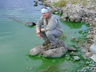 Jill Heinerth examines an estuary where green algae caused by pollution has smothered out the natural life. Photo: Wes Skiles