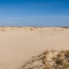 Monahans Sandhills SP: Dune Walk Panorama