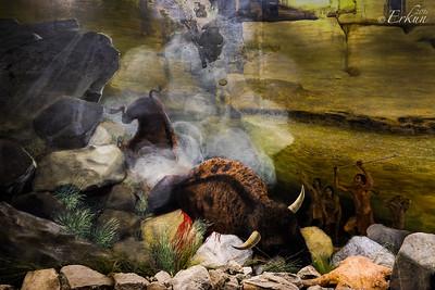 Interpretive Center: Bison Kill