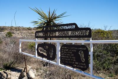 Galloway White Shaman Preserve