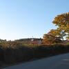 Beach Hill Farm