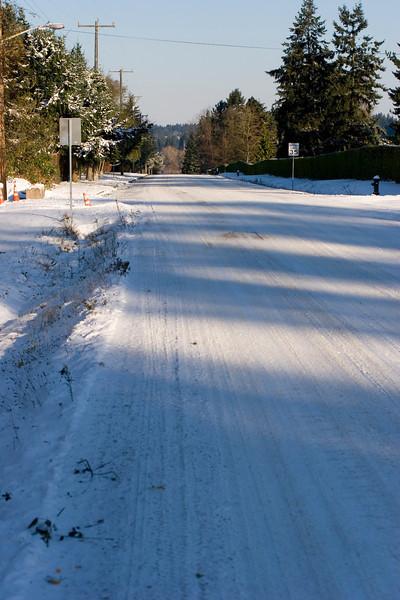 Looking North towards Lake Ballinger on 1st Ave NE, and NE 195th, St, Shoreline, Washington.
