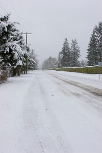 Looking north on 1st Ave NE, from NE 195th ST. Photographed: 1-18-2012.