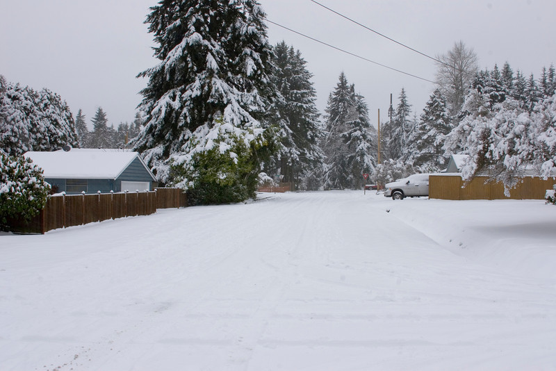 Landscape of south on 3rd Ave NE from NE 194th ST. Photographed: 1-18-2012.