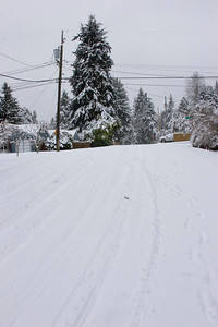 South on 3rd Ave NE, from NE 195th ST. Photographed: 1-18-2012.