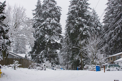 Looking south on 7th Ave NE from NE 198th ST. Photographed: 1-17-2012.