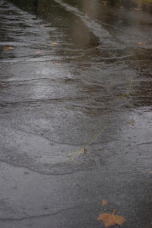 November Rainstorm 2011