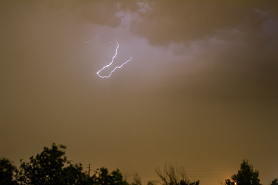 Photographed at the Gilbert Riparian Area on 4 September 2014.   Canon 7D camera, Sigma 50mm f/1.4 lens with a Nero Lightning Trigger.