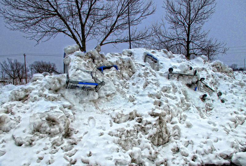 Snow Carts