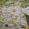 Hail Oct. 20, 2015