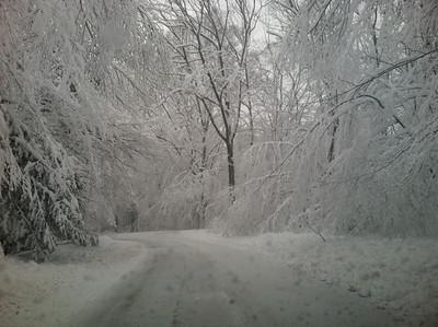 03-08-13 Heavy Snow