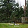 32  G 7781 NE 107th Ave Pine Tree Split
