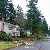 24  G 7888 NE 69th Street Tree Uprooted Wide
