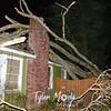 2  Wietzels Tree on House