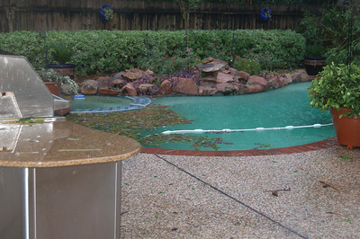 besides the 2 tree limbs in the pool and the pool debris filled one 55 gal trash can