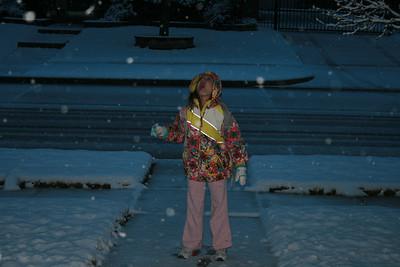 2010 February Snow