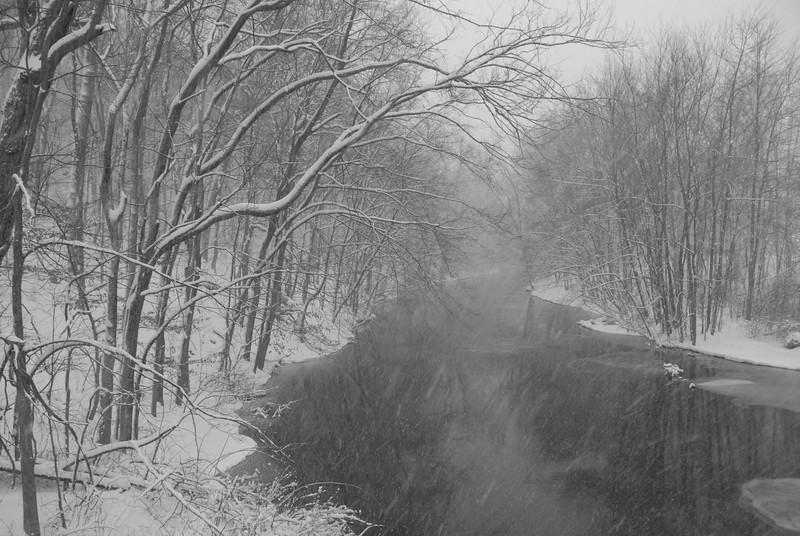 2010-02-10 WhippanyRiver in Snow Black and White.jpg