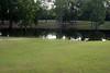 Scotlandville Park