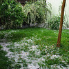 Hail piling up in our back yard.