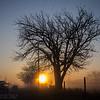 Foggy Amarillo sunrise   March 11