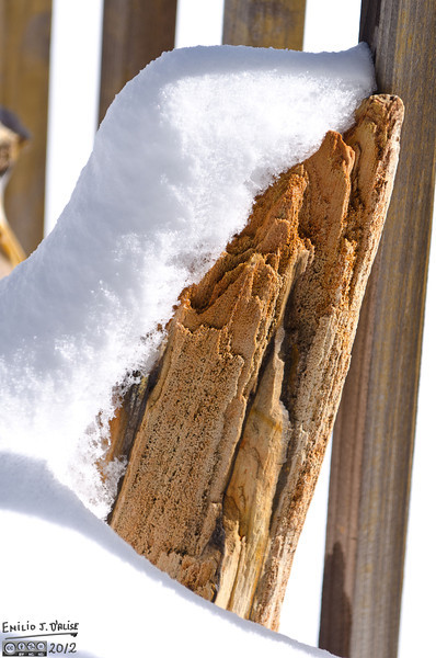 A piece of petrified wood leaning on our railing, and taking comfort under a mantle of snow.