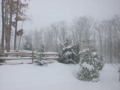 A Quiet Storm: Leesburg, VA: February 16, 2003