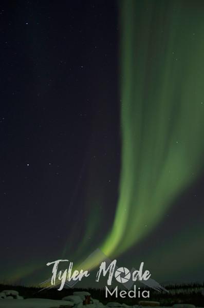 1188  G Aurora V