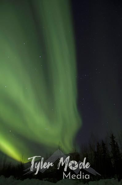 1185  G Aurora V