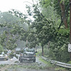 Fallen trees litter Center Road in Ashburnham on Monday afternoon while flash flood and tornado warnings were issued in the area. <br /> SENTINEL & ENTERPRISE / Ashley Green