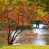 Japanese Garden<br /> Missouri Botanical Garden