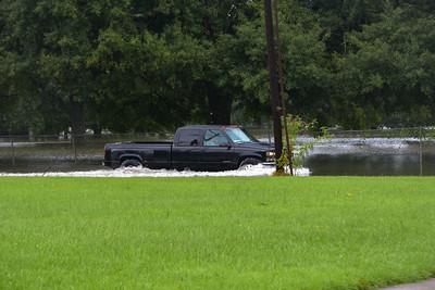 Winbourne Ave. 8/13/2013.