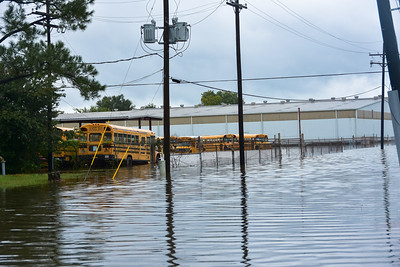 East Baton Rouge Parish Schools Bus yard. Mid Day 8/13/2016.